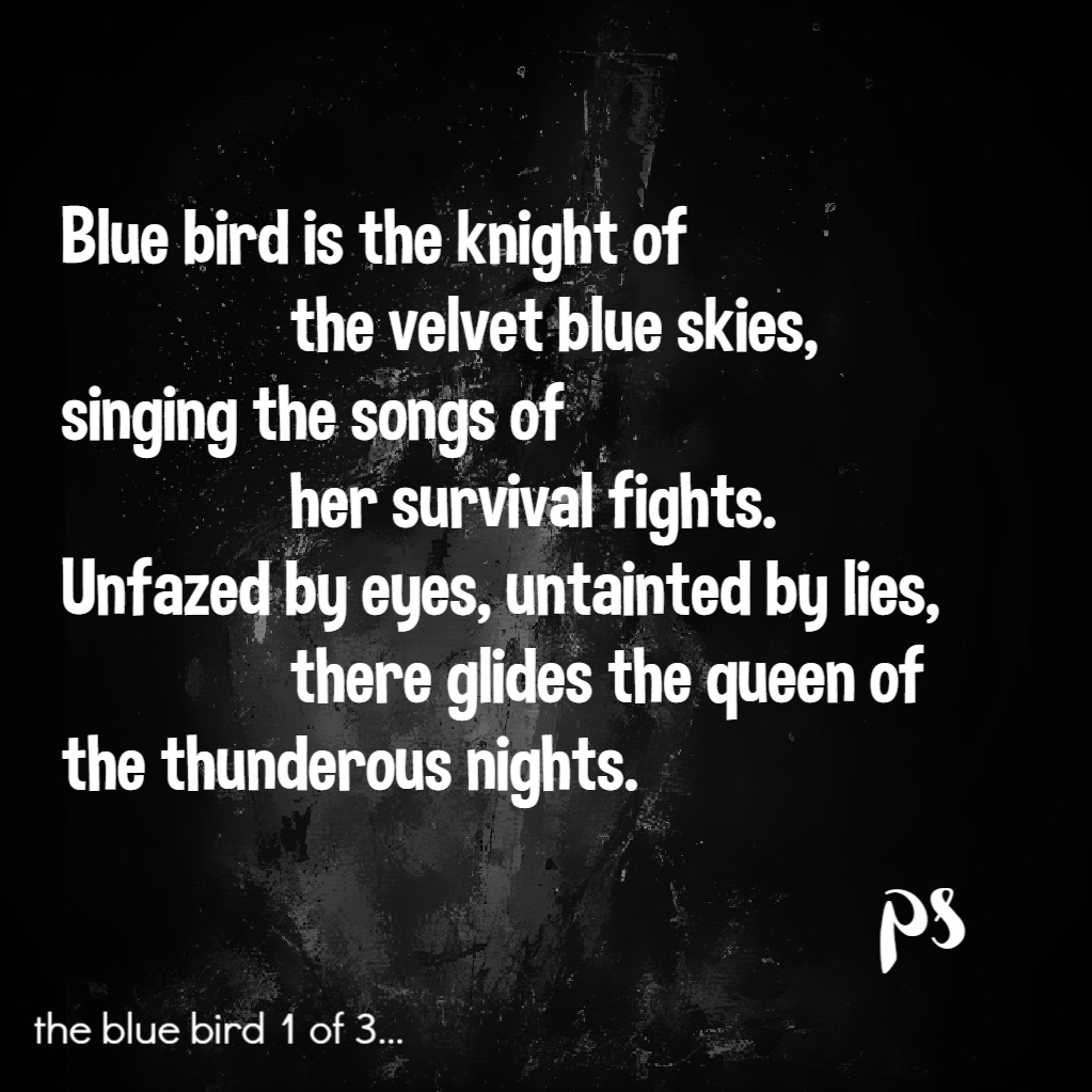 Songs of the Blue Bird1: Poems by Pavani